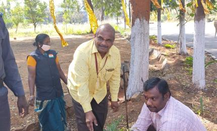 Planting Saplings at GCE Salem
